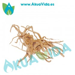 Tronco Spider Med. Aprox. 66 x 50 x 13 cm