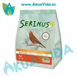 Serinus Canarios Rojos Mantenimiento 350 Grsr