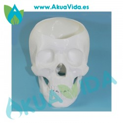 Calavera Blanca Macetero PLA Med. Aprox. 10 x 7.5 x 7 cm