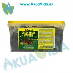 Tropical Green Algae Wafers espirulina en tabletas 2.25 Gr 5 Lts