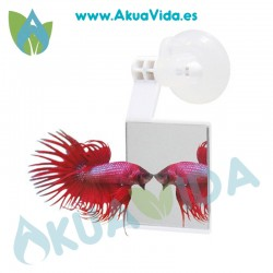 OF Betta Strike (Espejo Betta)