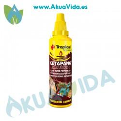 Tropical Ketapang Extract 50 ML