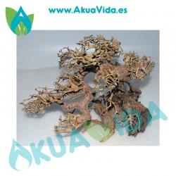 Bonsai 3 Med. Aprox. 27 x 16 x 22 cm