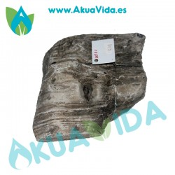 Roca Elephant Luohan Medida Aprox. 16 x 16 x 5 cm
