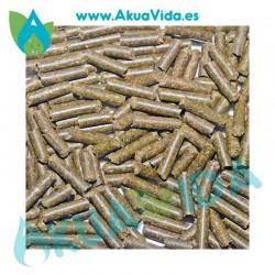 Hierba de Cebada Sticks 10 gr