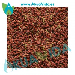 Akuavida Granulos Alimento Marino 50 Gr A Granel