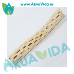 Tronco Cholla Medidas Aproximadas 20 cms