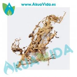 Rama Natural Thailand Tree Med. Aprox. 34 x 12 x 15 cm