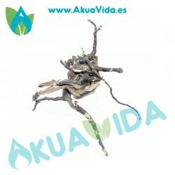 Raiz Natural Med. Aprox. 31 x 10 x 28 cm